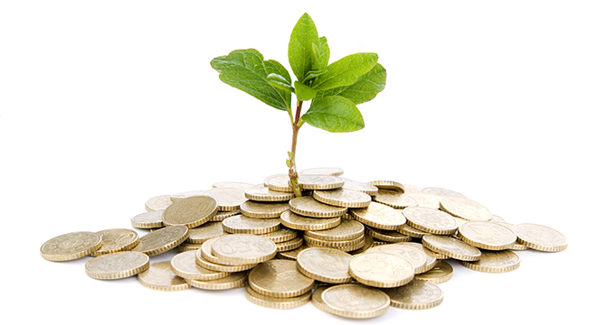 Coins and plant, food security