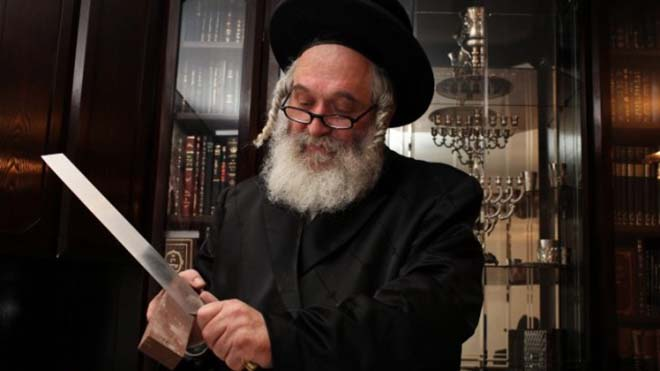 A Shochet Rabbi sharpening a kosher knife in preparation of Shechita slaughter