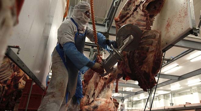 beef-slaughterhouse-cutting
