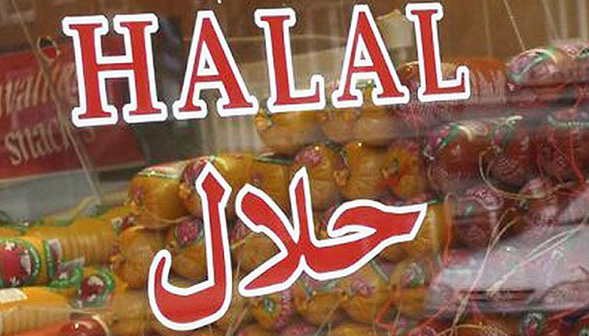 fast food business plan in pakistan halal food