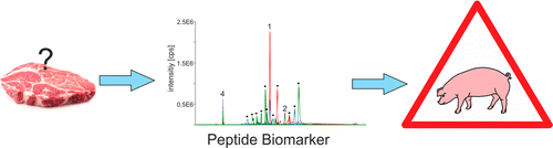 This is a sensitive mass spectrometrical approach for the detection of trace contaminations of horse meat and pork and demonstrate the specificity of the identified biomarker peptides against chicken, lamb, and beef.